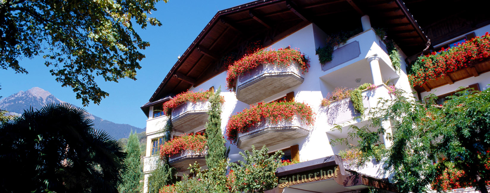 Offers in Merano – packages and flat-rates